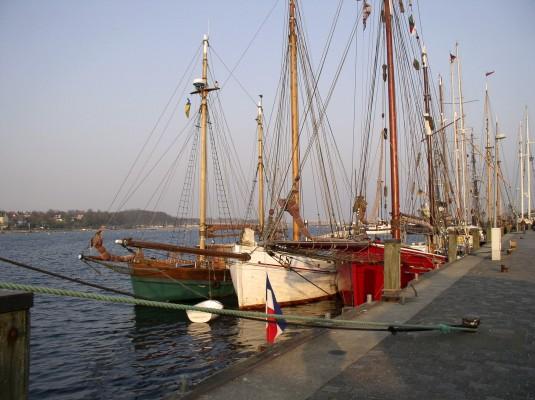 Platessa im Außenhafen