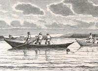 Snurrewade Fischerei im Limfjord
